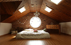 Ceiling Skylights